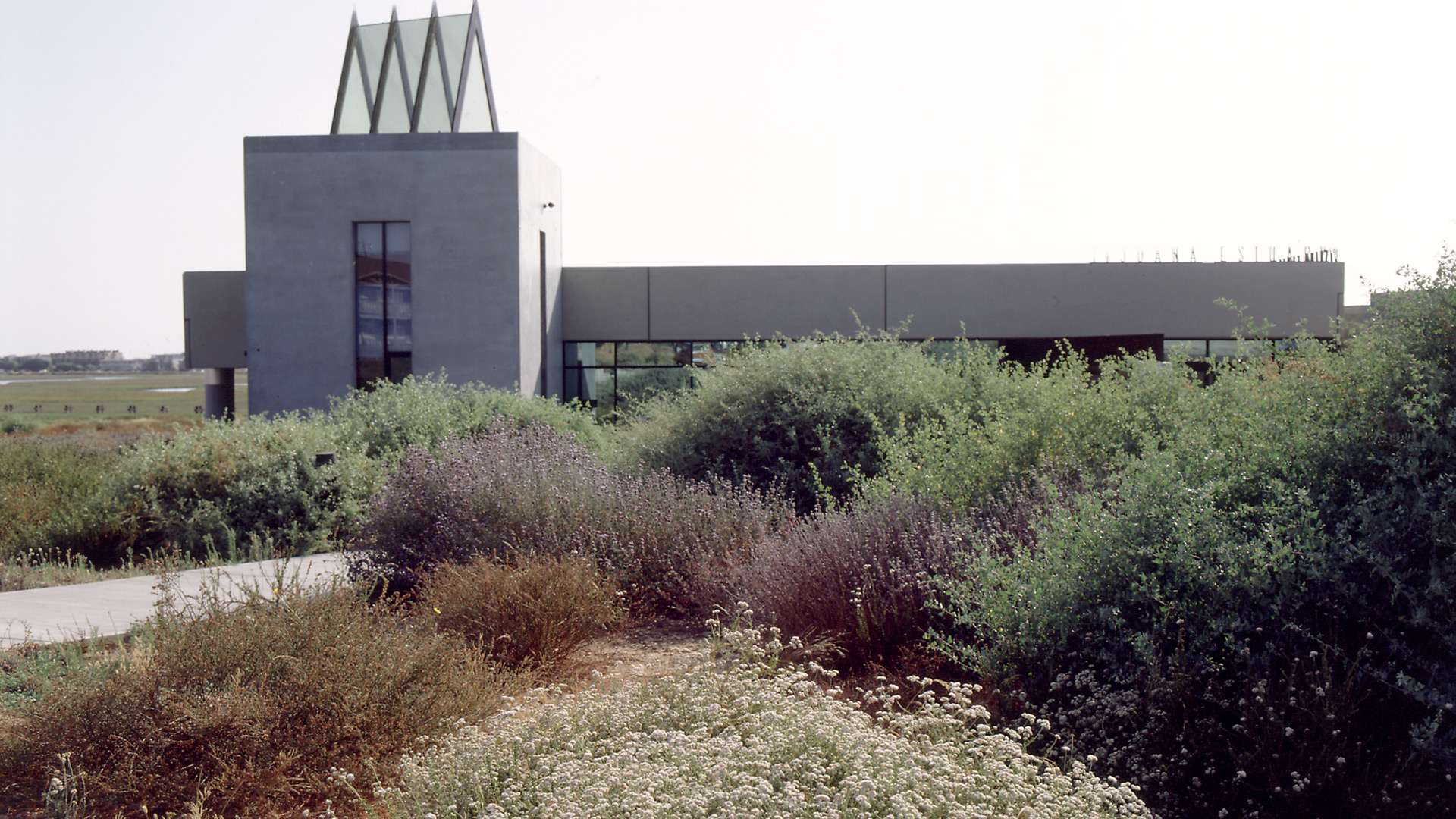 Tijuana Estuary Visitor Center Primary 1