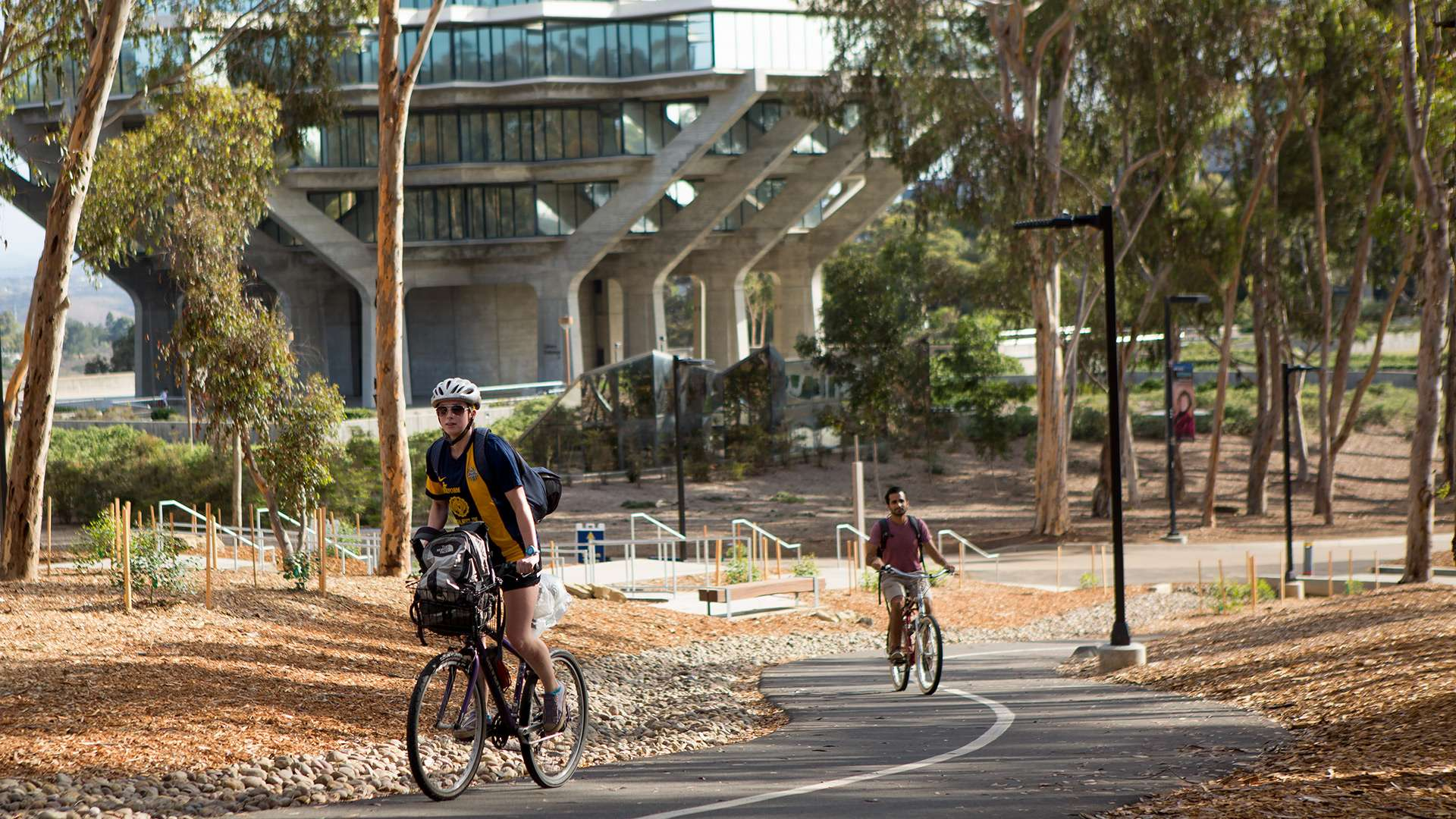 UCSD University Center Bike & Pedestrian Improvements Primary 1