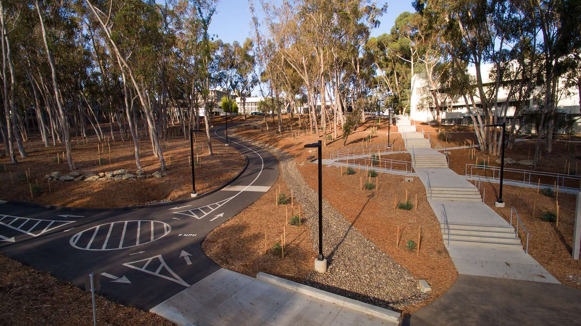 UCSD University Center Bike & Pedestrian Improvements Primary 2