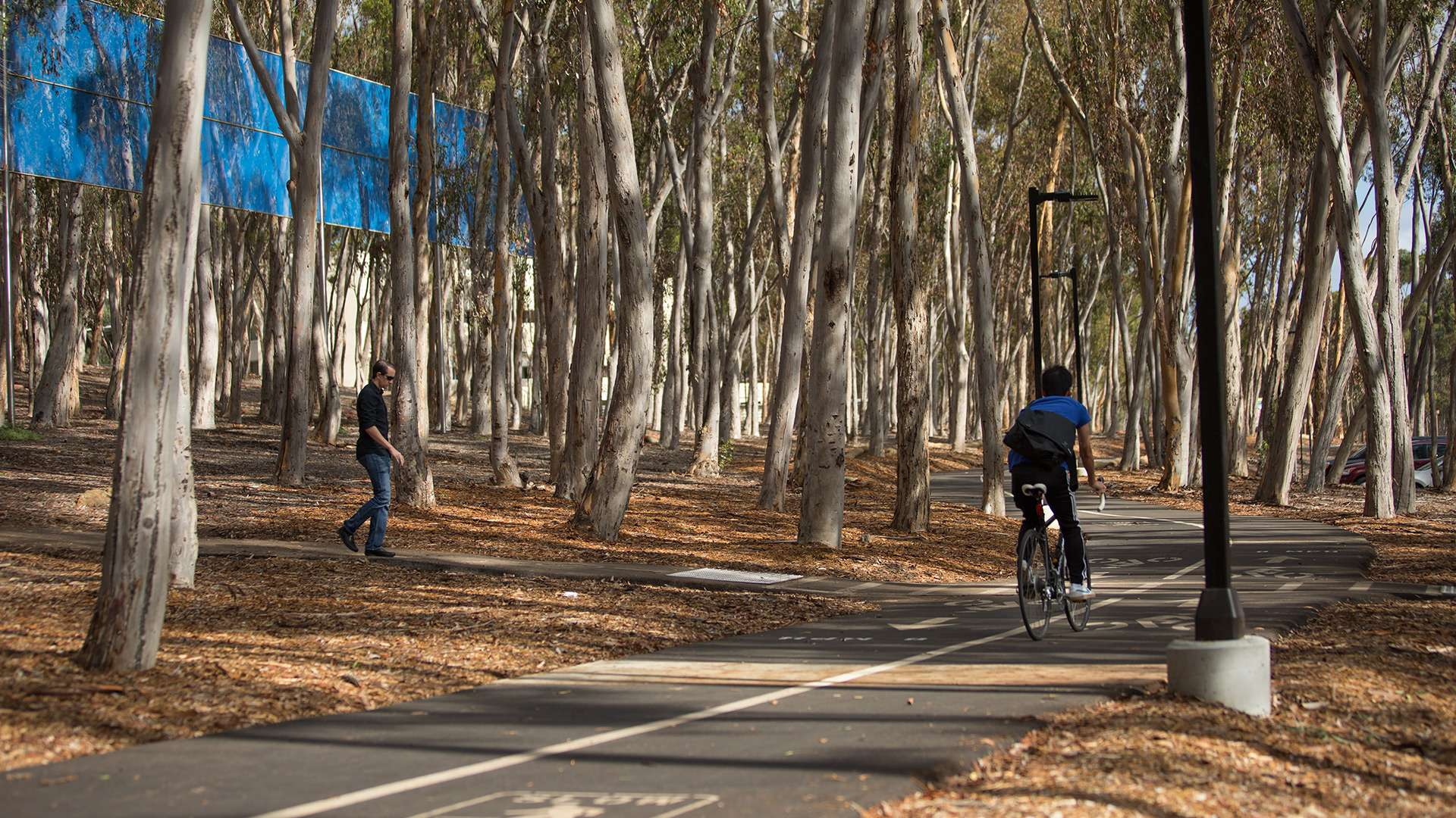 UCSD University Center Bike & Pedestrian Improvements Primary 6